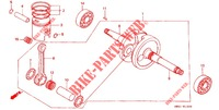 CRANKSHAFT/PISTON Engine 50 honda-motorcycle DIO 1989 E_10